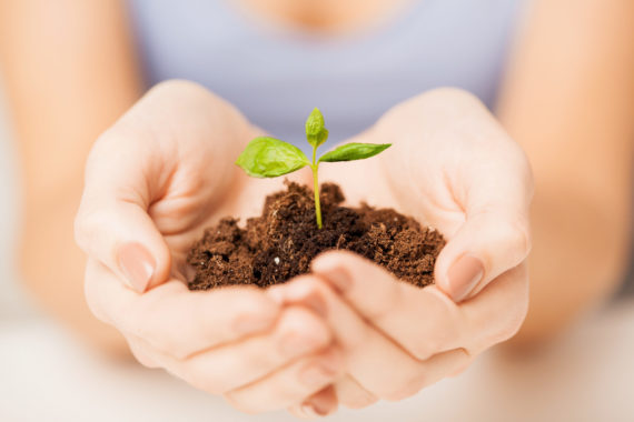 Picture,Of,Woman,Hands,With,Green,Sprout,And,Ground